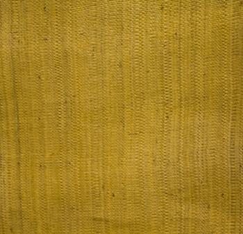 Elena Yellow